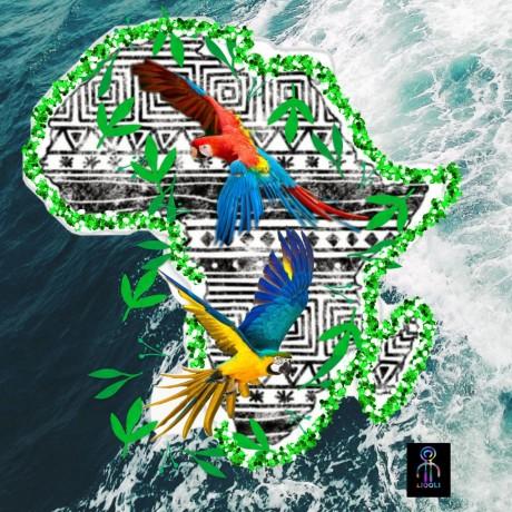 Africa Bamdata
